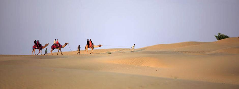 camelride-banner